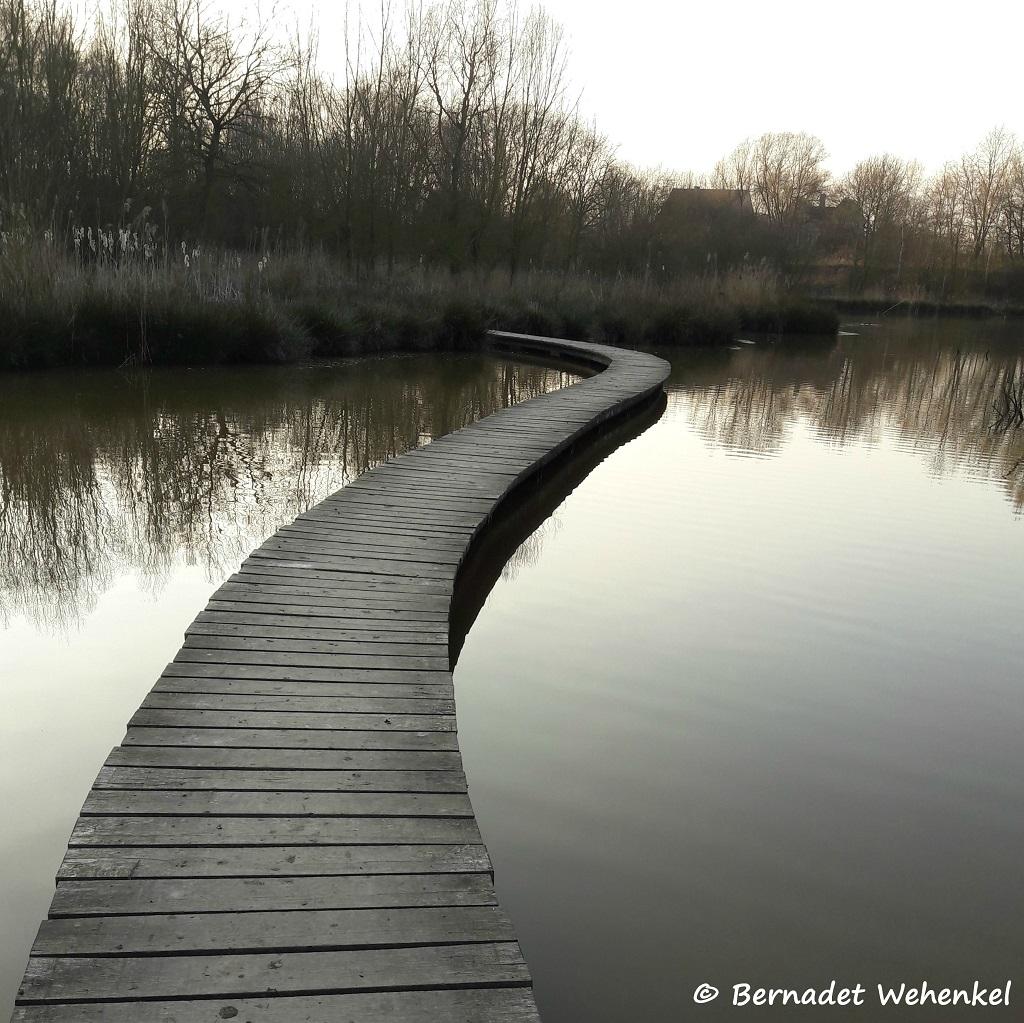 Winter in het Vinne in Zoutleeuw.
